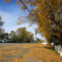 площадь, Завитинск