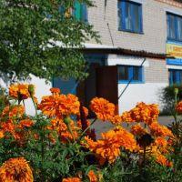 Дом творчества.Фото Александра Грабора (gralkon), Ивановка