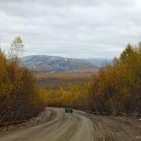 Дорога в Златоустовск, Коболдо