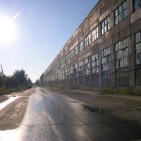 Morning Road / Утренняя дорога, Новобурейский