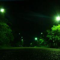 ул. Музыкальная ночью, Райчихинск