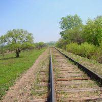 Железная дорога в п. Восток, Райчихинск