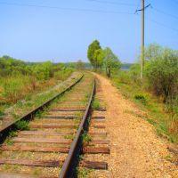Железная дорога с Восточки, Райчихинск