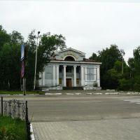 """Бывший кинотеатр """"Родина"""", Райчихинск"""