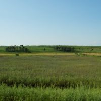 Green Spaces / Зеленые просторы, Ромны