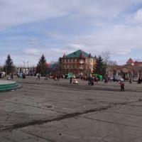 Площадь Ленина, Свободный