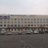 гостиница Зея, Свободный