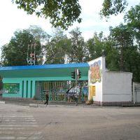 Стадион Локомотив, Свободный