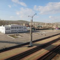Станция Сковородино, Сковородино