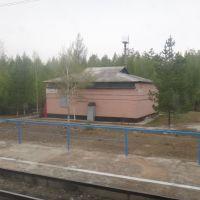 Разъезд Звонкое, Стойба