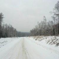 Гнутые березы. Дорога на рудник Маломыр., Стойба