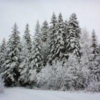 Лукачевский перевал, Стойба