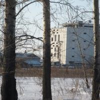 Элеватор, Тамбовка