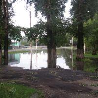 Потоп, Тамбовка