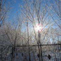 Вид со двора ЦЗН, Тамбовка