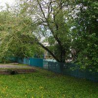 Pionerskaya st., Тамбовка