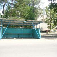 Остановка, Шимановск