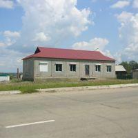 Дом у дороги, Шимановск