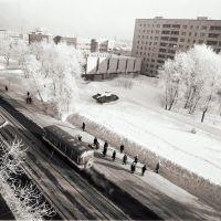 Ресторан «Полярный», Архангельск