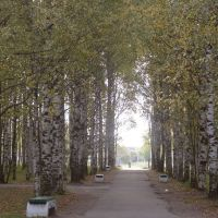 Парк (п.Березник), Березник