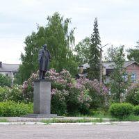 Вельск, площадь Ленина, Velsk, Lenin square, Вельск