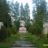 Памятник, Верхняя Тойма