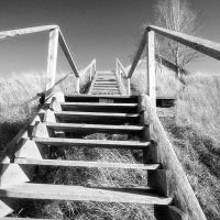 Лестница, Верхняя Тойма