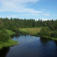 река Ваймуга возле п. Обозерский, Емца