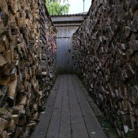 Поленница дров во дворе 16.06.06, Каргополь