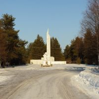 Памятник, Карпогоры