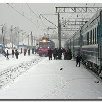 Station of Konosha, Russia, Коноша