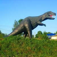 Динозавр. Коноша. Архангельская область, Коноша