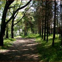с.Красноборск, Набережная, Красноборск