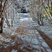 Деревянный тротуар, Нарьян-Мар