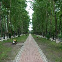 Улица 50 лет Октября. 250709, Новодвинск