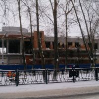 zentral, Новодвинск