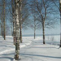 В парке. 16.03.13., Новодвинск