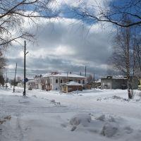 Поселок Пинега, Пинега
