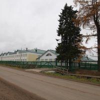 новая школа, Пинега