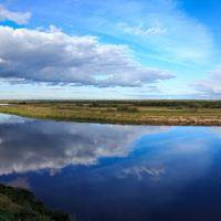 Вид на реку Пинега., Пинега