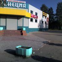 Плесецкие магазины, Плесецк