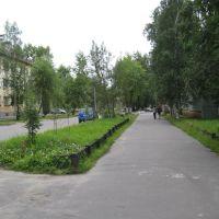 Газон у ФСБ 2, Северодвинск