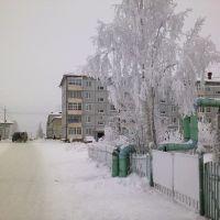 Холмогоры Красноармейская, Холмогоры
