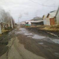 Парухина, Холмогоры