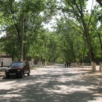 Астраханская обл. Улица в г.Нариманов, Нариманов