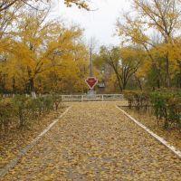 Осенний пейзаж, Нариманов