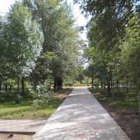 Дорожка в парке, Ахтубинск
