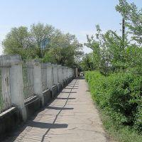 Дорога вдоль парка, Ахтубинск