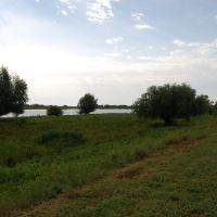 Недалеко от пос. Цветное,  Астраханская область, Володарский