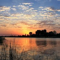 Sunset, Икряное